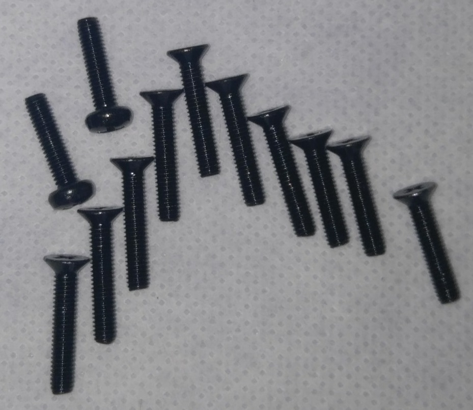 BLACK  Stainless Steel Screws